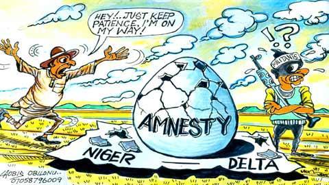 We'll end Amnesty programme soon  – FG