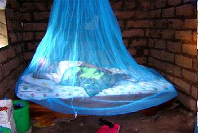 Nets, Malaria