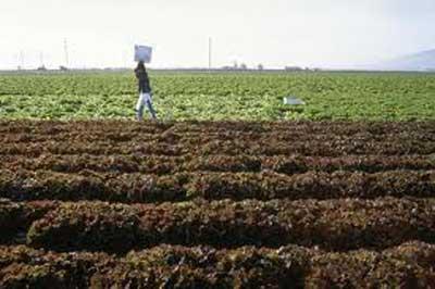 fertilizer farm
