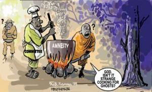 boko-amnesty