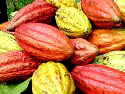 FG resolves to galvanise agric sector with technological innovations