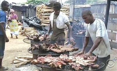 National Park, NESREA take campaign against bushmeat consumption to FCT markets