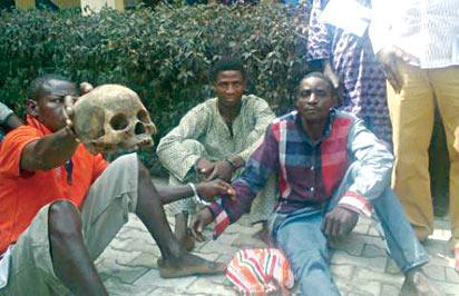 The suspected ritualists paraded with human skull by the Ondo State Police Command.