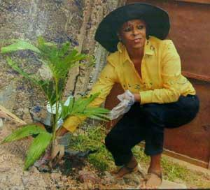 Mrs. Bose Ransome -Kuti, during the planting of 70 trees to mark her 70th birthday.