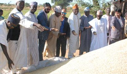 Chairman of Pearl Universal Impex Limited, Pulkit Jain, the new Emir of Borgu, Muhammed Sani Haliru Dantoro, Independent Director, Pearl Universal Impex , Kamal Pandey; Jubril Bokani Yeman, Consultant Community and Publishing Sector and Mr. Vaibhav Sinha, Accountant, Pearl Universal Impex at the first rice harvest ceremony of the Pearl Universal Impex Limited in Saminaka, Borgu LGA, Niger state recently.