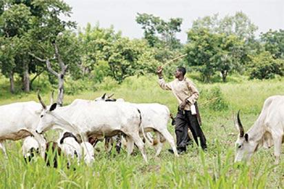 Ortom to Fulani herdsmen: Don't quit Benue; ranch your cattle