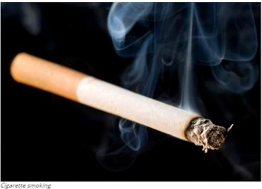 Smoking one cigarette a day harms smoker's health — WHO