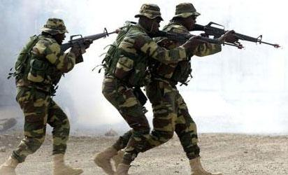 We'll launch Crocodile Smile in Ogun soon — Army