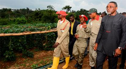 It's time we go back to farming – Aregbesola
