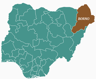 NOA trains 87 LG staff on FOI Act in Borno