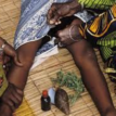 Imo community where indigenes are fined N10,000 for practising Female Genital Mutilation
