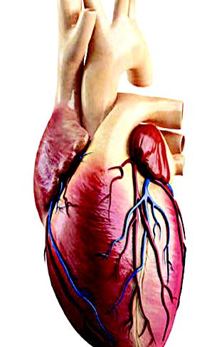 Poor people at higher risk of heart disease — Study