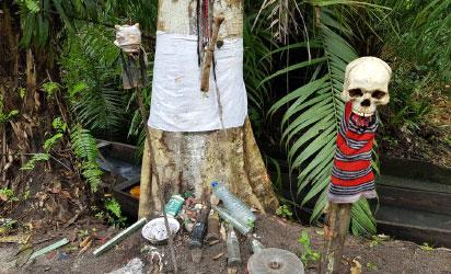 12 minors charged with cultism in Lagos