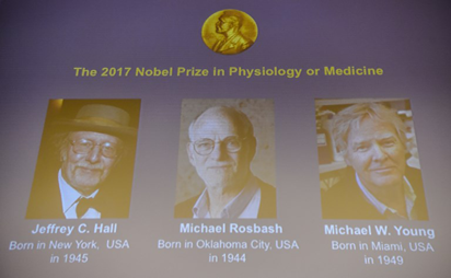 US biology trio wins Nobel Medicine Prize