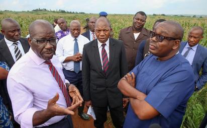 Harvest commences in Edo State-Saro Farm, Sobe
