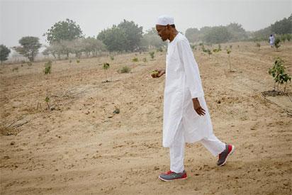 Ikpeazu rejects proposed cattle colonies for herdsmen