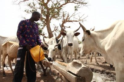 Ohanaeze Ndigbo rejects grazing colonies