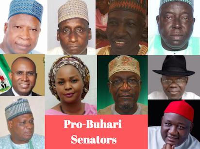[Image: Pro-Buhari-Senators.png]