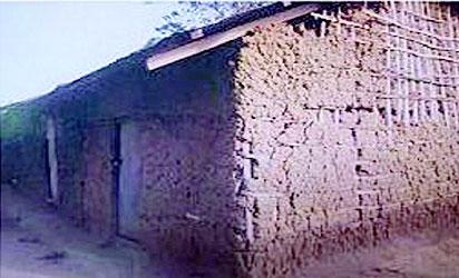 •Dilapidated building invaded by termites