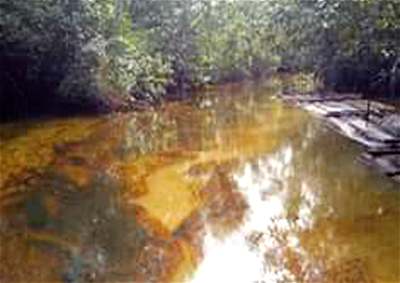 Ogoni Cleanup: We're shocked court said HYPREP is unknown to law ― Ogoni Youths