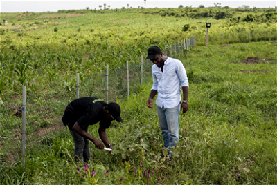 farmers, Climate change major threat to agricultural development – Expert