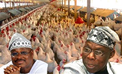 Obasanjo-farms