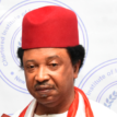 June 12 : Shehu Sani, others advocate deepening of democracy in Nigeria