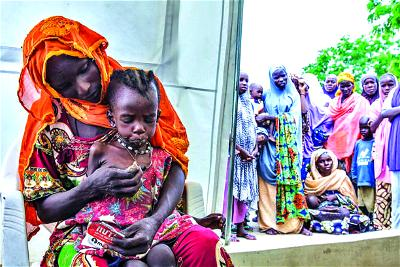 Nutrition: Why Nigeria must bridge gap in North East now