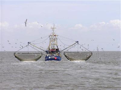 Fishing trawlers, Nigeria