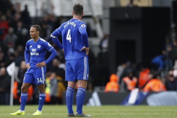 Premier League, Tottenham, Cardiff, relegation