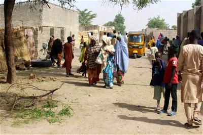 Insurgency victims to receive agric inputs from Victim Support Fund