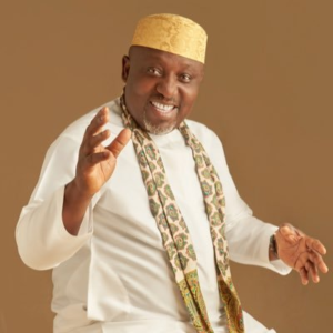 Culture and Tourism not my area of expertise, says Senator Okorocha
