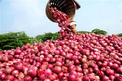 Housewives advocate security, mechanised farming to reduce cost of food