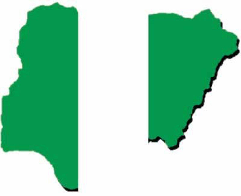 anarchy, Nigeria's plunge, Nigeria Healthcare Excellence