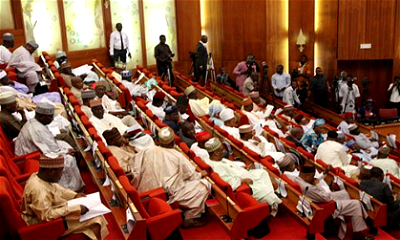 INSECURITY: Beyond lamentation of National Assembly