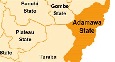 ADAMAWA LGS POLLS: PROTESTS AS FREE FOR ALL FIGHT MARS PDP PRIMARIES
