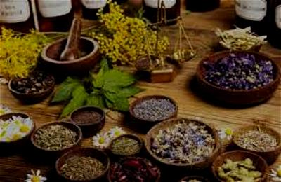 Encourage professors to research into local herbs to combat COVID-19 ― Adedoyin tells FG