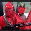 Militants point new path to N'Delta devt.
