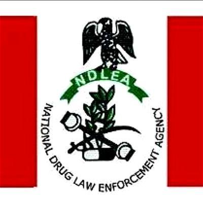 NDLEA intercepts 239 kilograms of illicit drug in Imo