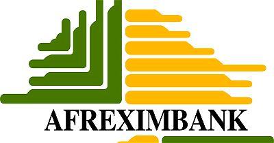Afreximbank grows assets to $19bn
