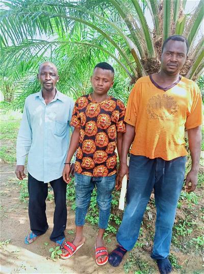 Bandit, troops, farmer