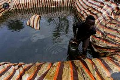 Pollution: N'Delta fishermen to convert fish farms to oil bunkering camps — Militants