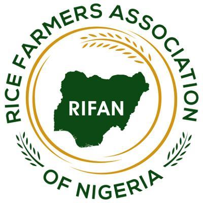 Rice farmers in Kebbi producing 4m tonnes annually — RIFAN