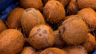 Coconut: Fear of seizure hinders production — Lagos Gov.