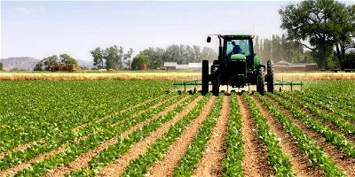 Agriculture is now coat of many colours, Bellefu reveals