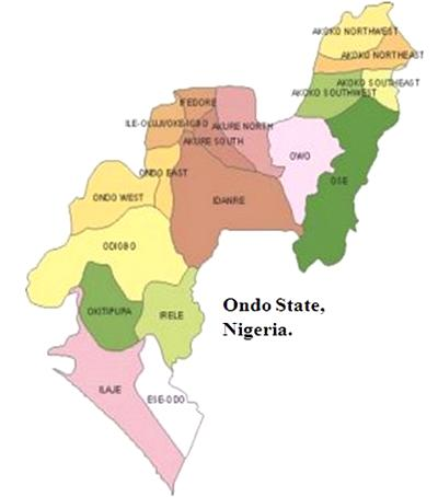 Olowo threatens political thugs with traditional curse