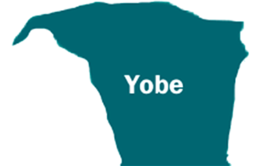 Yobe executive council approves N3.2bn for capital projects