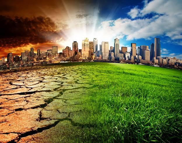 Environmentalist calls for active collaboration against Climate Change effects