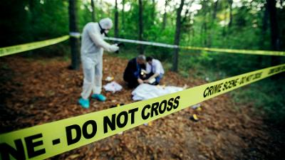 Forensic Investigation: Building up a case