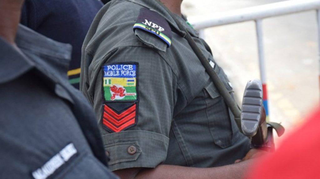 Police raid criminal hideout, arrest 28 suspects - Vanguard News